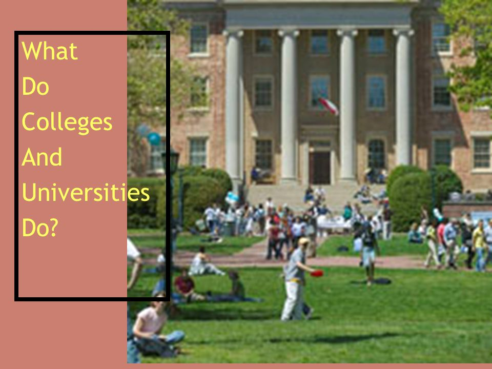 What Do Colleges And Universities Do?