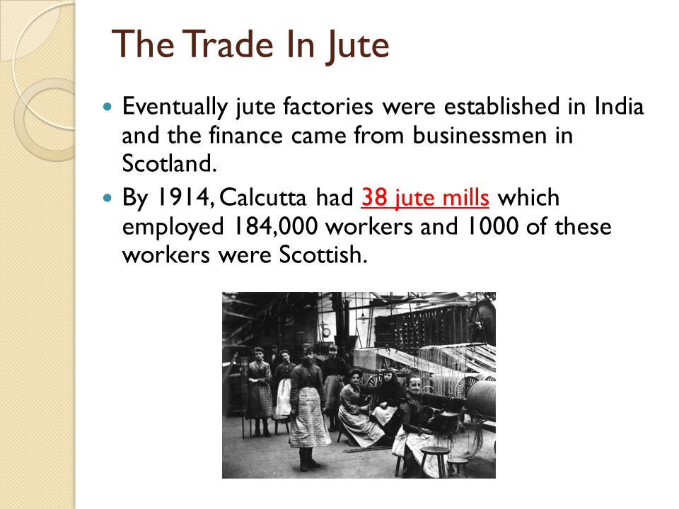 The Trade In Jute Eventually jute factories were established in India and the finance came from businessmen in Scotland. By 1914, Calcutta had 38 jute