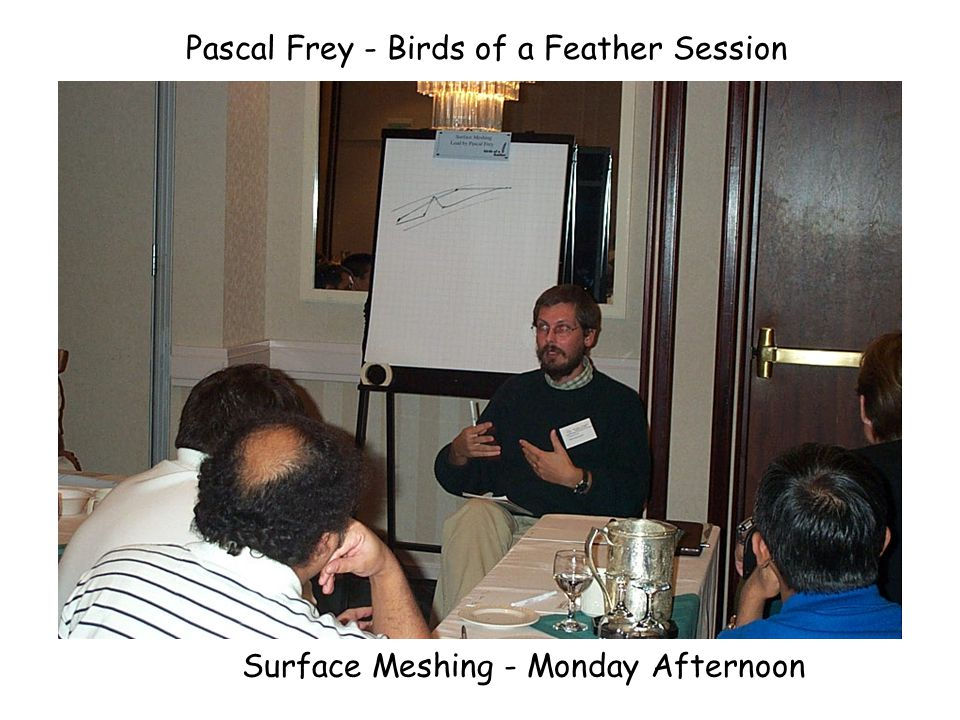 Ted Blacker - Birds of a Feather Session Volume Meshing - Monday Afternoon