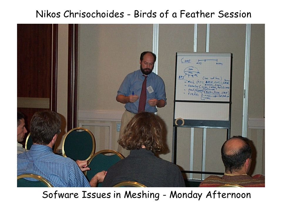 Pascal Frey - Birds of a Feather Session Surface Meshing - Monday Afternoon
