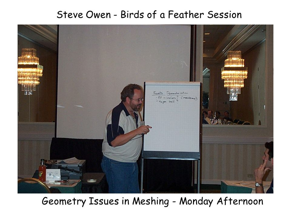 Nikos Chrisochoides - Birds of a Feather Session Sofware Issues in Meshing - Monday Afternoon