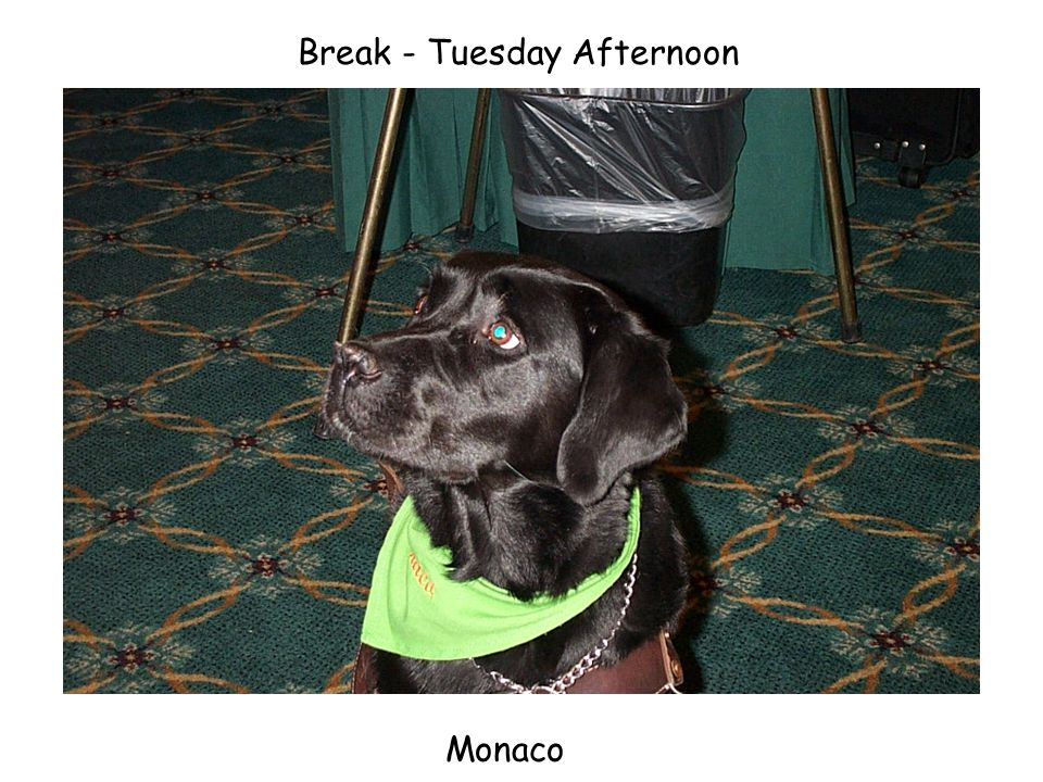 Break - Tuesday Afternoon