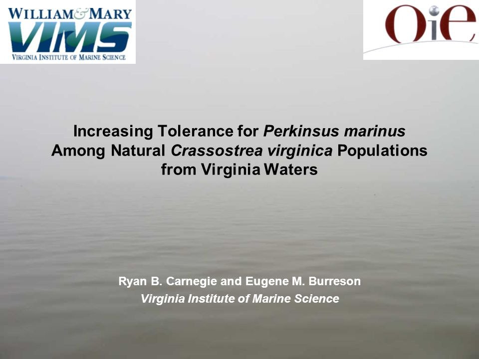 Increasing Tolerance for Perkinsus marinus Among Natural Crassostrea virginica Populations from Virginia Waters Ryan B. Carnegie and Eugene M. Burreso
