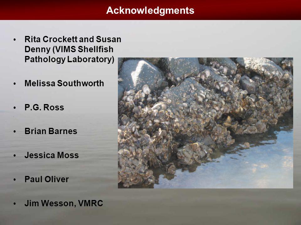 Acknowledgments Rita Crockett and Susan Denny (VIMS Shellfish Pathology Laboratory) Melissa Southworth P.G.