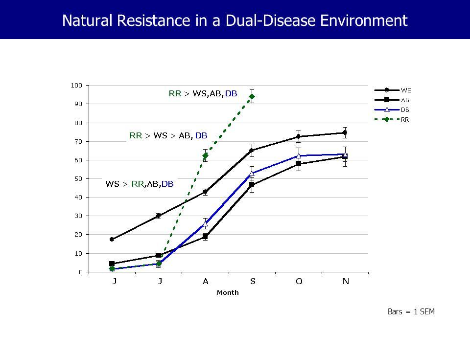 Natural Resistance in a Dual-Disease Environment Bars = 1 SEM