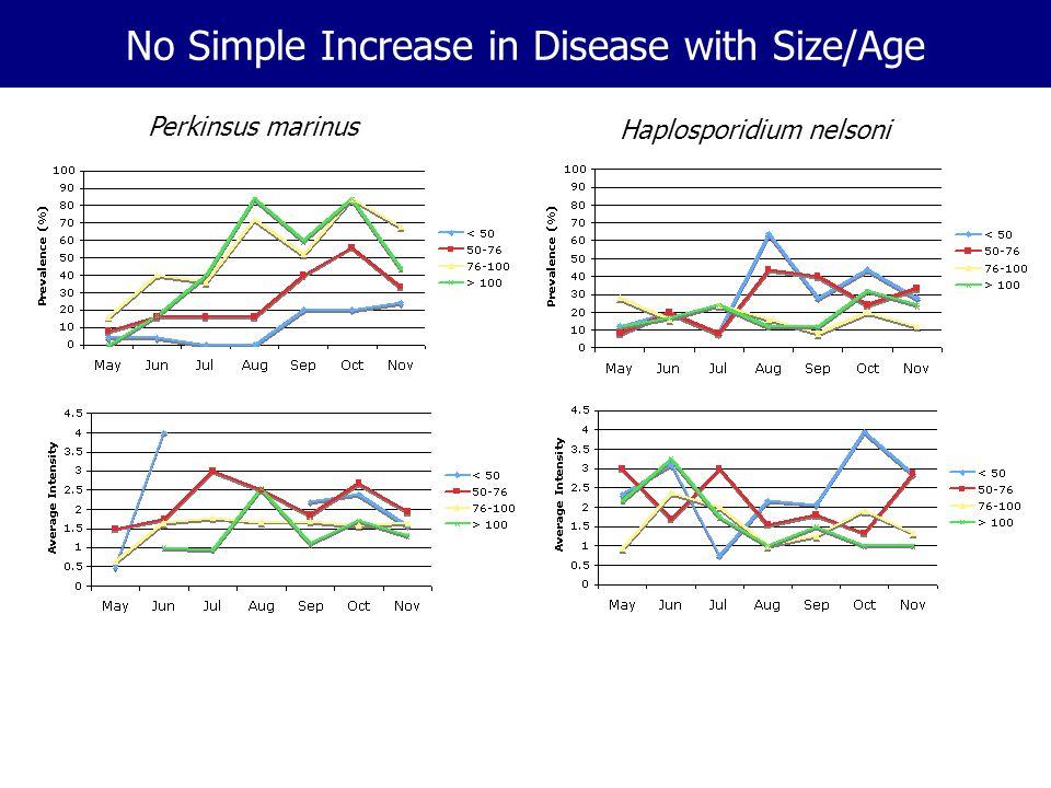 No Simple Increase in Disease with Size/Age Perkinsus marinus Haplosporidium nelsoni