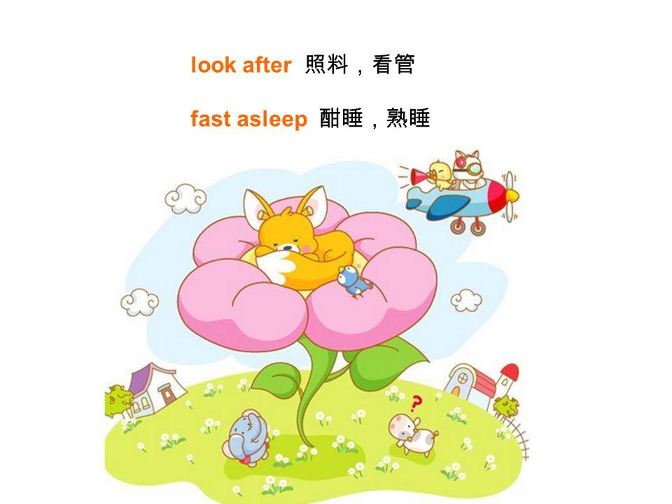 look after 照料,看管 fast asleep 酣睡,熟睡