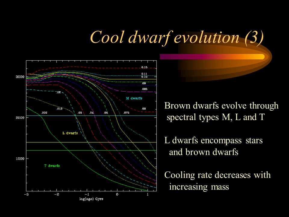 Cool dwarf evolution (3) Brown dwarfs evolve through spectral types M, L and T L dwarfs encompass stars and brown dwarfs Cooling rate decreases with increasing mass