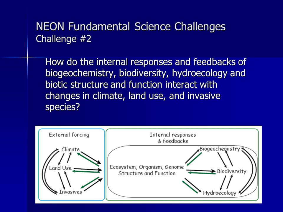 Mapping of Grand Challenge Areas to Network Design: Relocatables D 01 D 02 D 03 D 04 D 05 D 06 D 07 D 08 D 09 D 10 D 11 D 12 D 13 D 14 D 15 D 16 D 17 D 18 D 19 D 20 E1E2 INVASV BIODIV LAND USE BIOGEO ECO- HYDRO CLIMATE D01-D20: Domains 1-20 E1 = STREON Eperiment E2 = Global Change Eperiment = addressed by relocatable systems