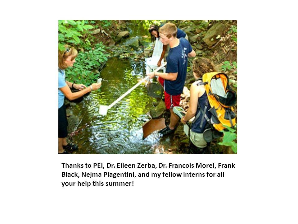 Thanks to PEI, Dr. Eileen Zerba, Dr.