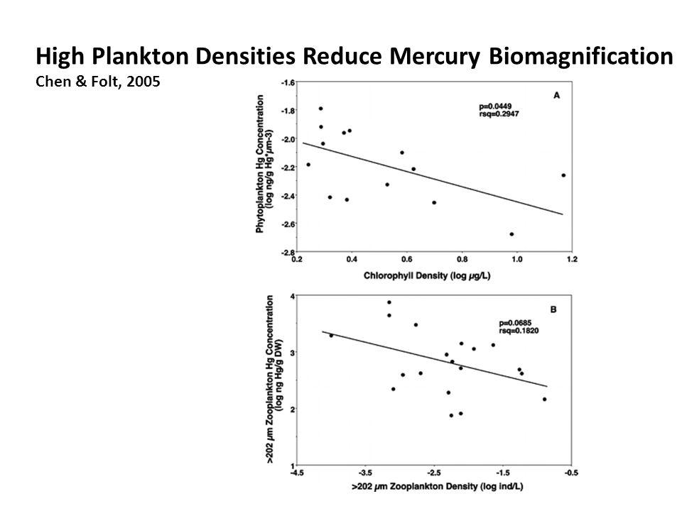 High Plankton Densities Reduce Mercury Biomagnification Chen & Folt, 2005