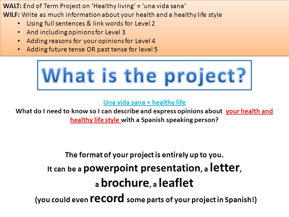 The format of your project is entirely up to you.