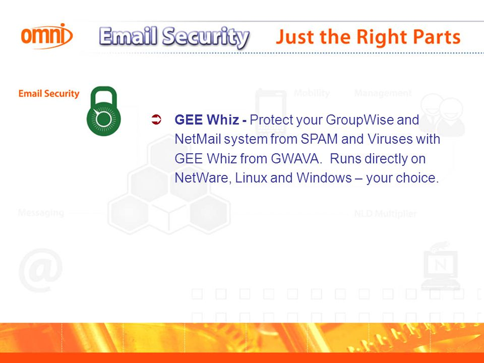  GEE Whiz - Protect your GroupWise and NetMail system from SPAM and Viruses with GEE Whiz from GWAVA.