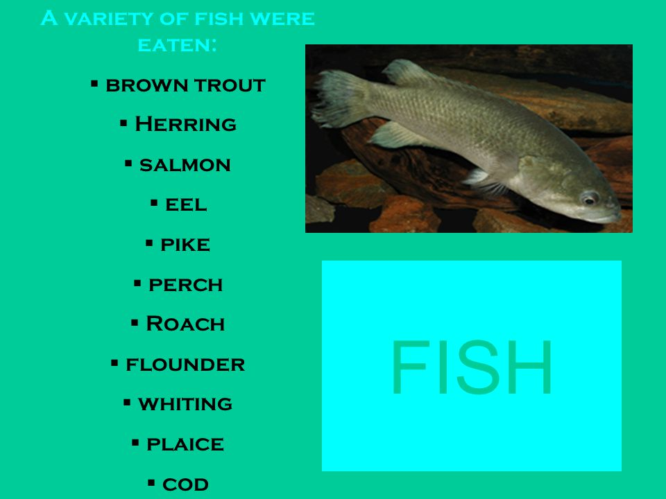 FISH A variety of fish were eaten:  brown trout  Herring  salmon  eel  pike  perch  Roach  flounder  whiting  plaice  cod