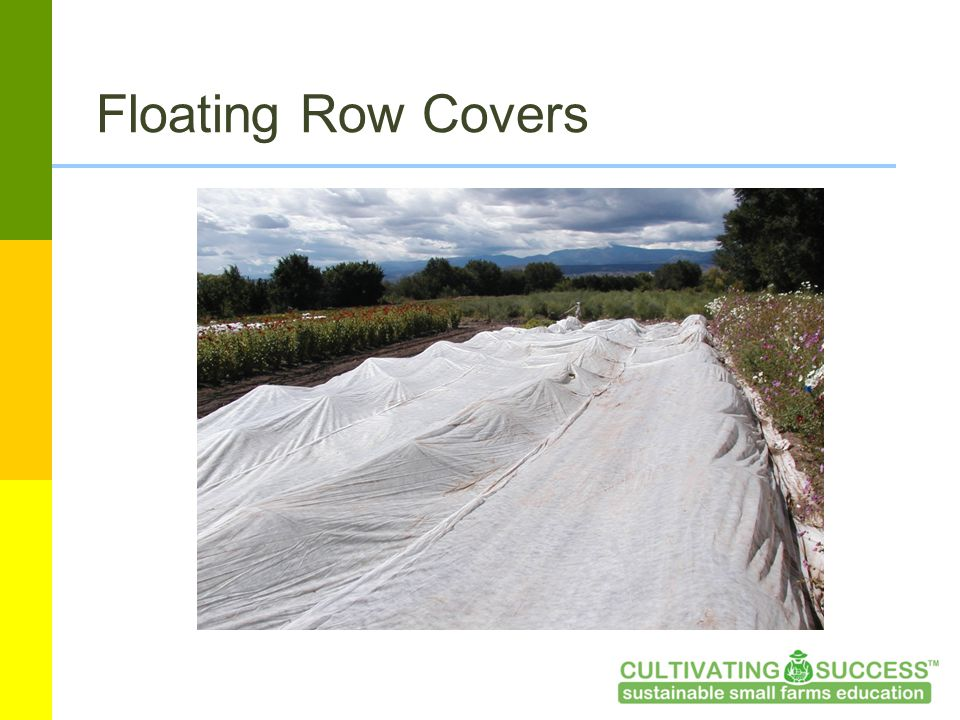 Floating Row Covers