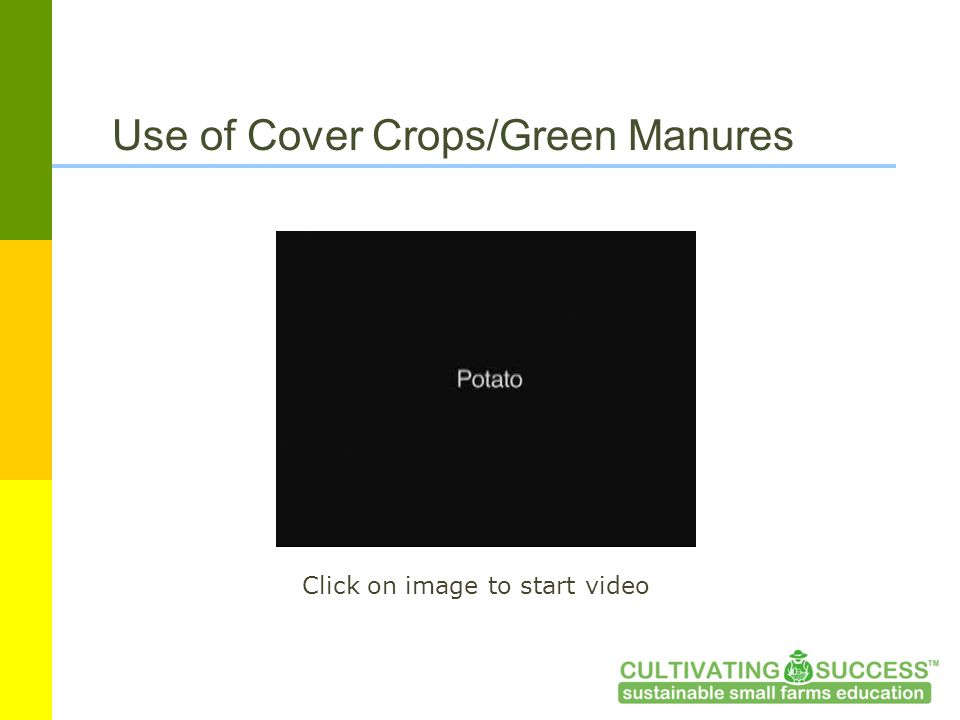 Use of Cover Crops/Green Manures Click on image to start video