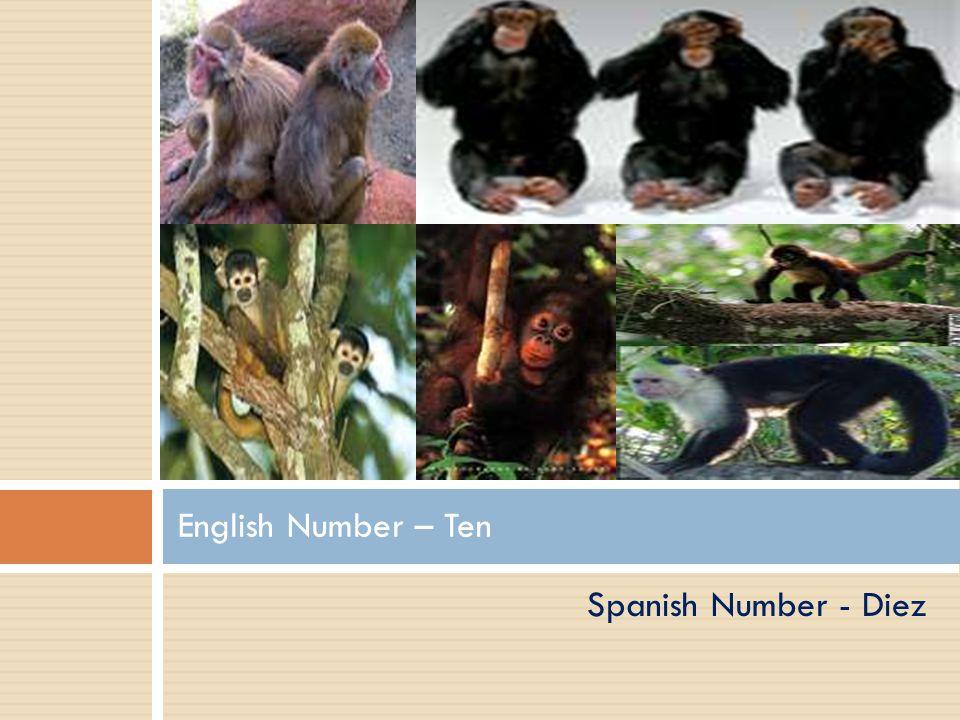 Spanish Number – Nueve English Number – Nine