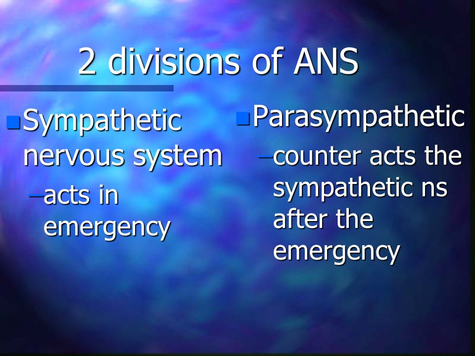 2 divisions of ANS n Sympathetic nervous system –acts in emergency n Parasympathetic –counter acts the sympathetic ns after the emergency