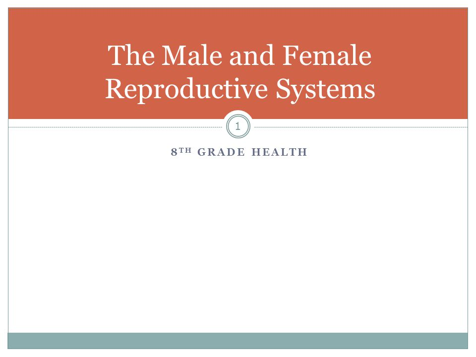 8 TH GRADE HEALTH 1 The Male and Female Reproductive Systems