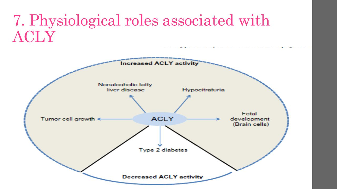 7. Physiological roles associated with ACLY