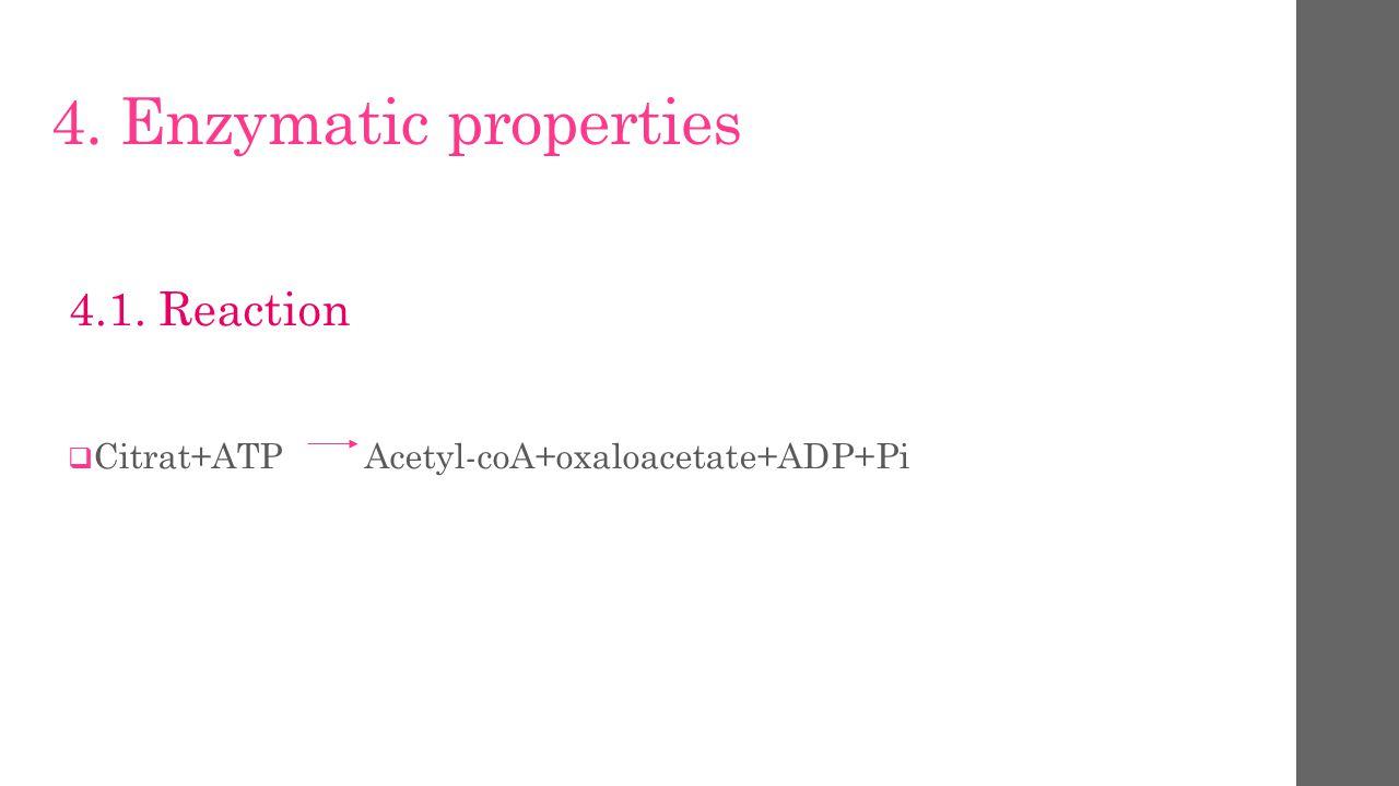 4. Enzymatic properties 4.1. Reaction  Citrat+ATP Acetyl-coA+oxaloacetate+ADP+Pi