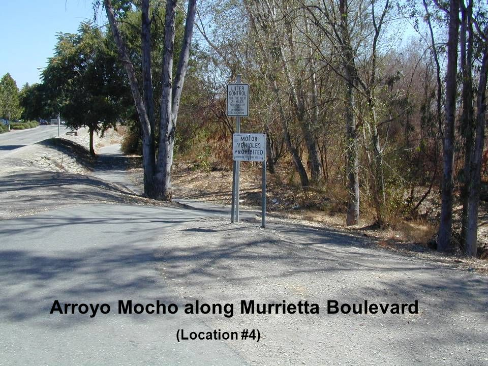 Arroyo Mocho along Murrietta Boulevard (Location #4)