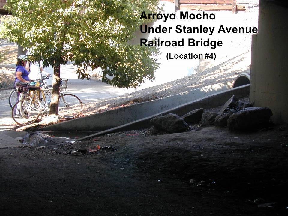Arroyo Mocho Under Stanley Avenue Railroad Bridge (Location #4)