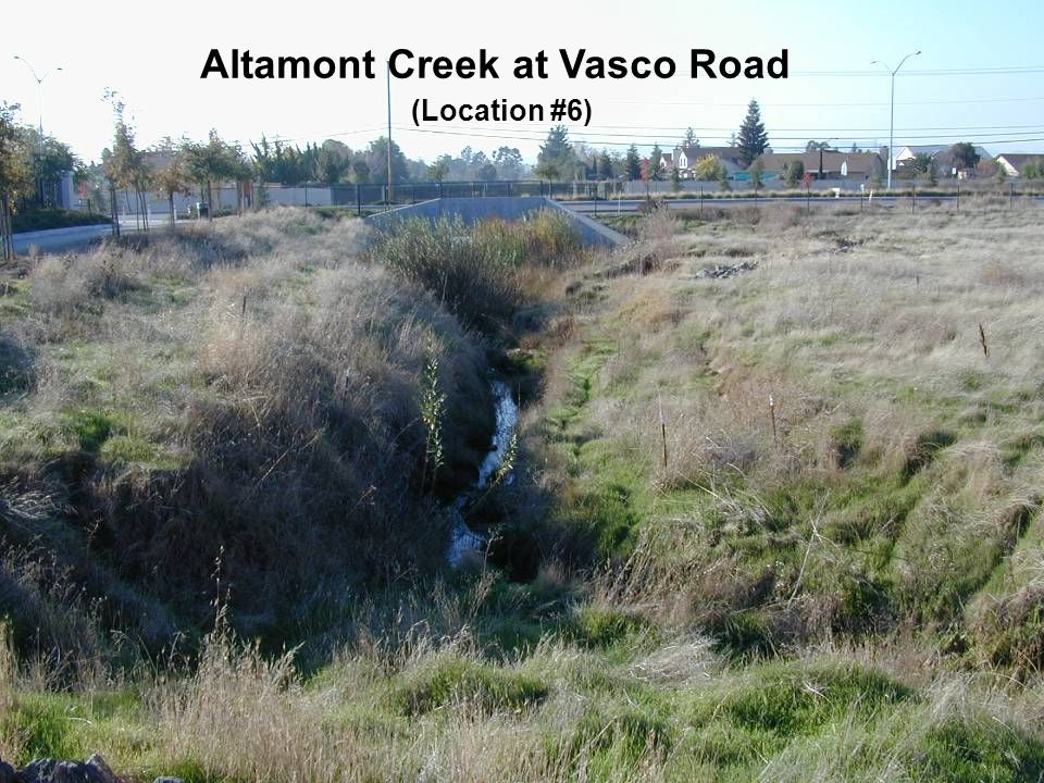 Altamont Creek at Vasco Road (Location #6)