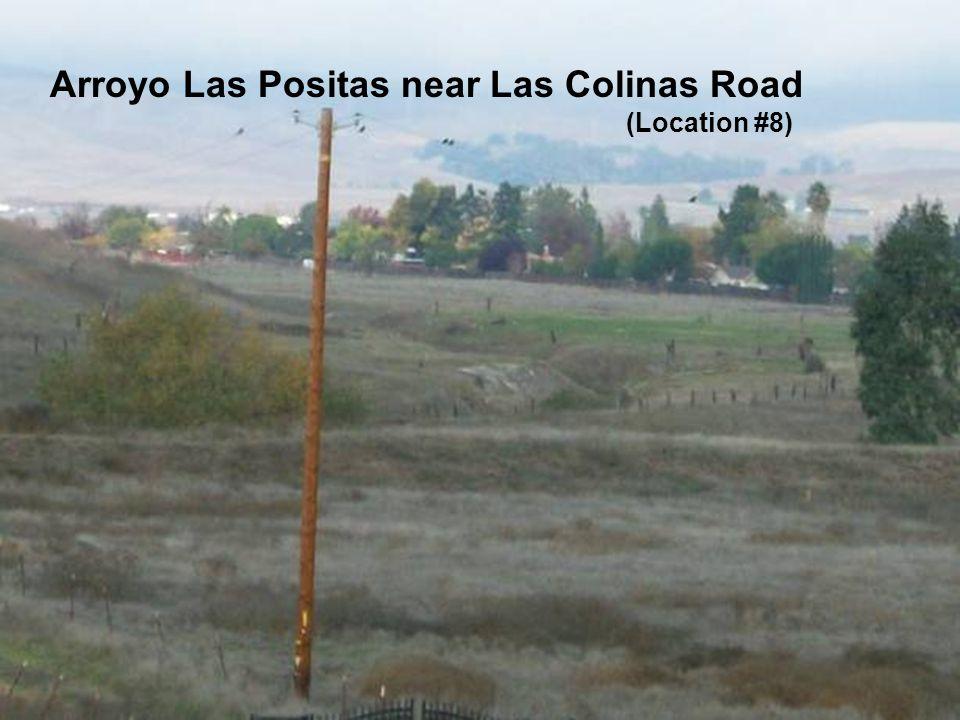 Sediment along the Arroyo Las Positas and Arroyo Mocho Arroyo Las Positas near Las Colinas Road (Location #8)