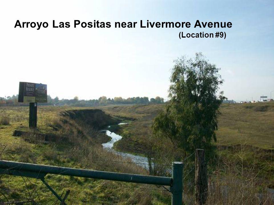 Sediment along the Arroyo Las Positas and Arroyo Mocho Arroyo Las Positas near Livermore Avenue (Location #9)