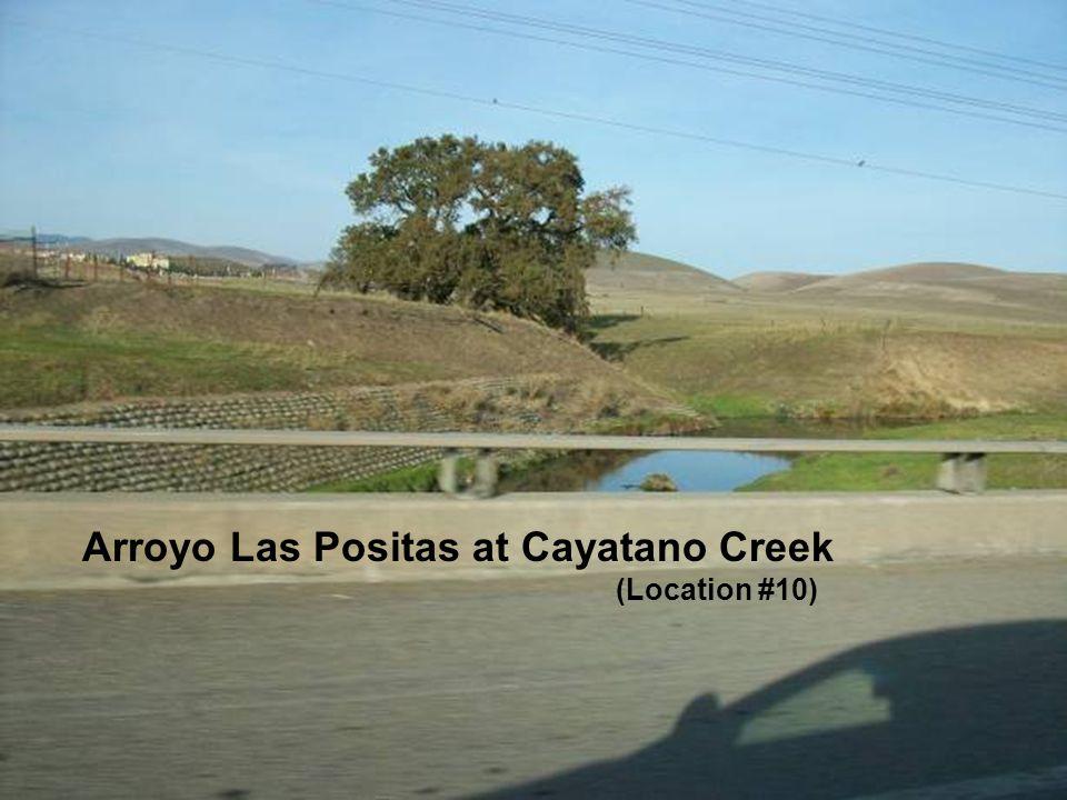 Sediment along the Arroyo Las Positas and Arroyo Mocho Arroyo Las Positas at Cayatano Creek (Location #10)