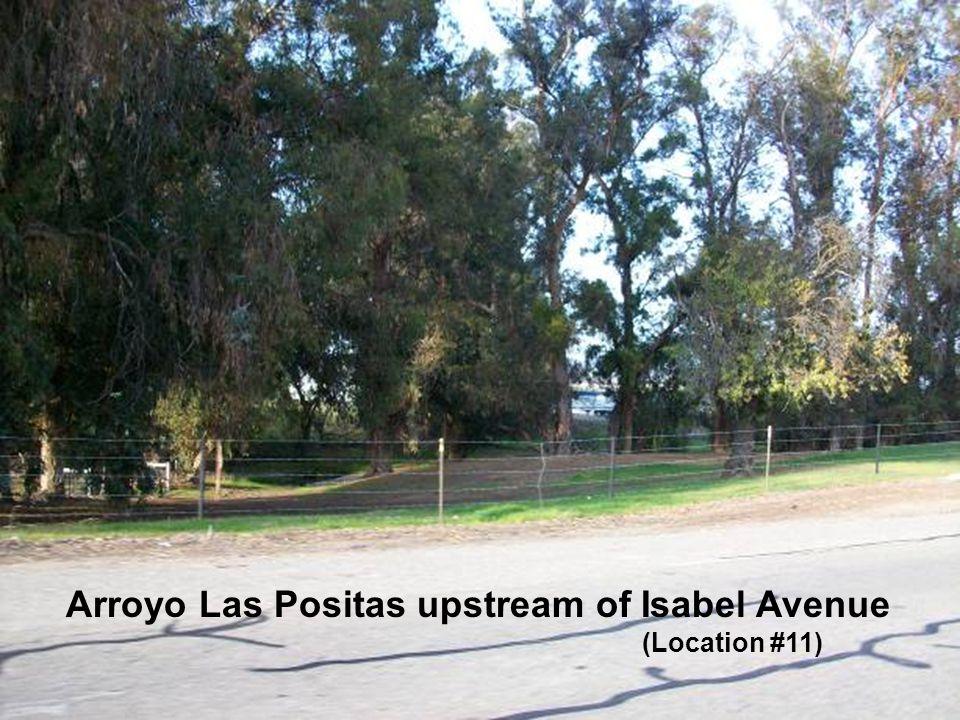 Sediment along the Arroyo Las Positas and Arroyo Mocho Arroyo Las Positas upstream of Isabel Avenue (Location #11)