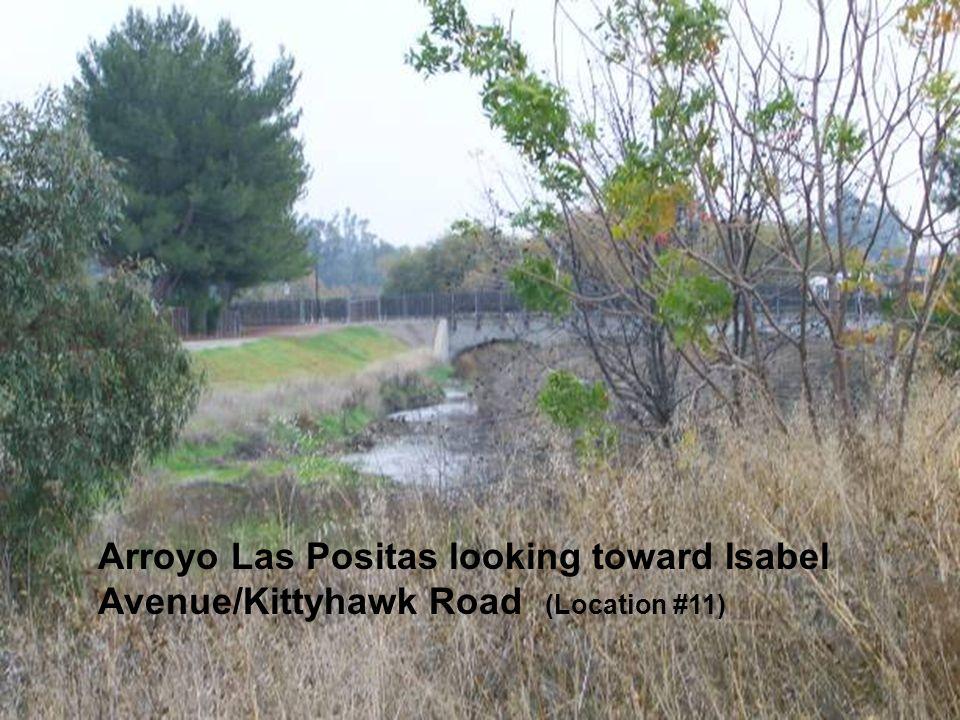 Sediment along the Arroyo Las Positas Arroyo Las Positas looking toward Isabel Avenue/Kittyhawk Road (Location #11)