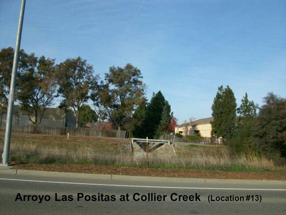 Sediment along the Arroyo Las Positas and Arroyo Mocho Arroyo Las Positas at Collier Creek (Location #13)