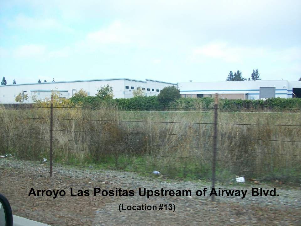 Arroyo Las Positas Upstream of Airway Blvd. (Location #13)