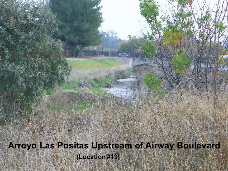 Arroyo Las Positas Upstream of Airway Boulevard (Location #13)