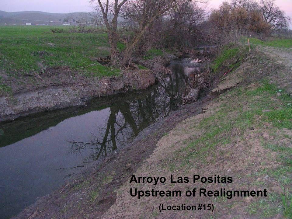 Arroyo Las Positas Upstream of Realignment (Location #15)