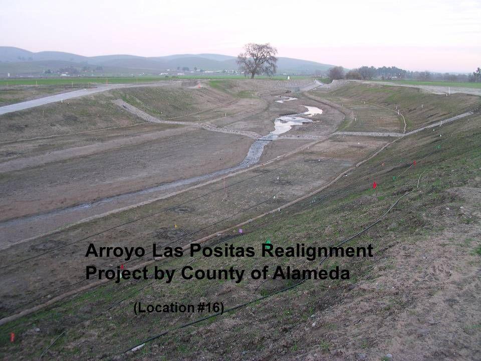 Arroyo Las Positas Realignment Project by County of Alameda (Location #16)