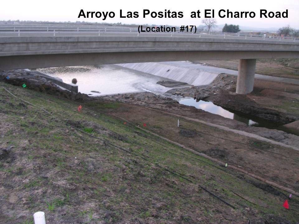 Arroyo Las Positas at El Charro Road (Location #17)