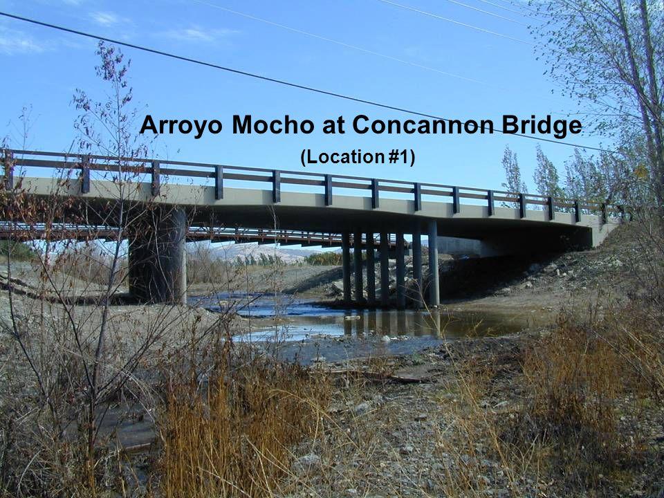 Arroyo Mocho at Concannon Bridge (Location #1)