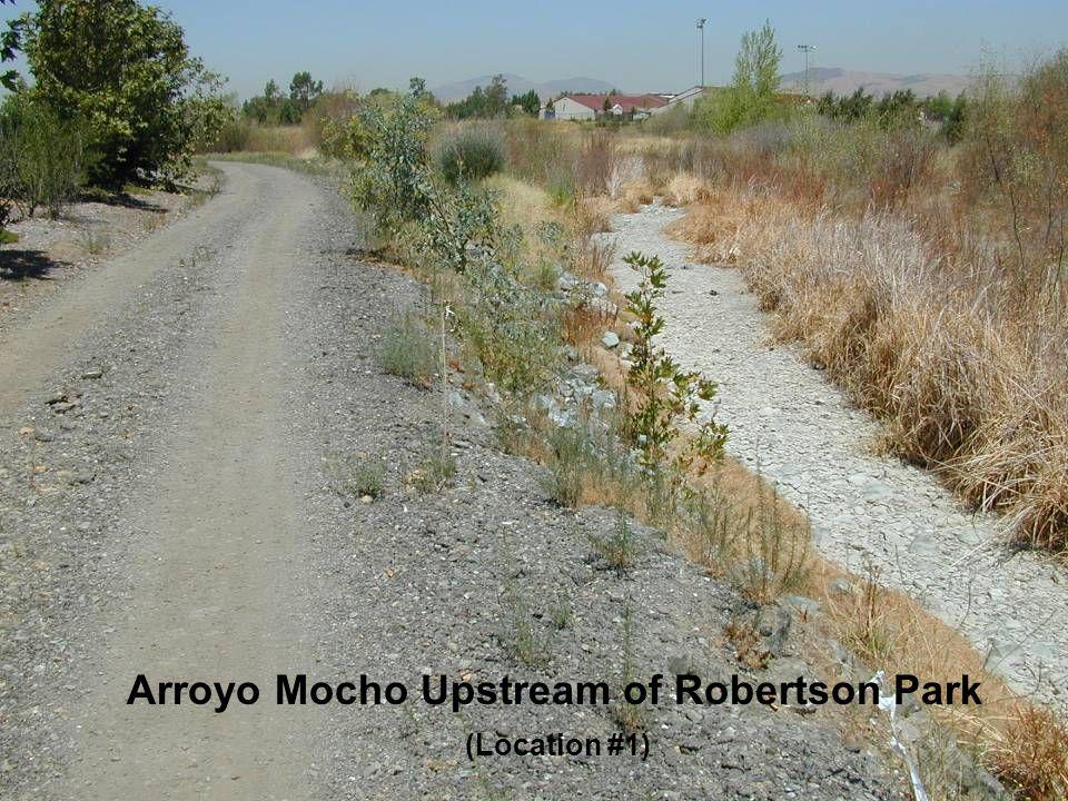Arroyo Mocho Upstream of Robertson Park (Location #1)