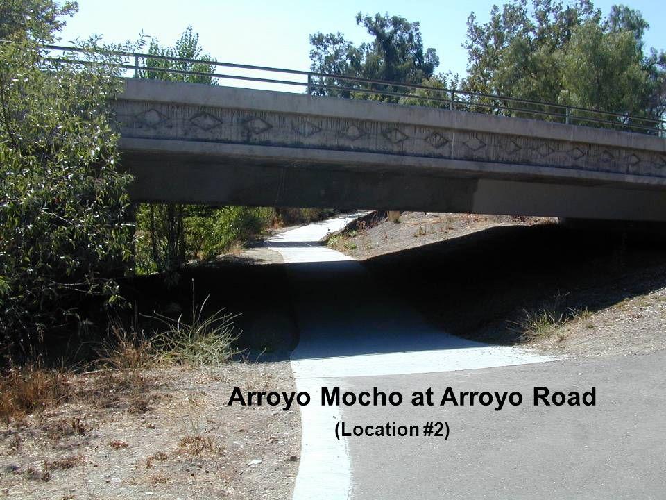 Arroyo Mocho at Arroyo Road (Location #2)