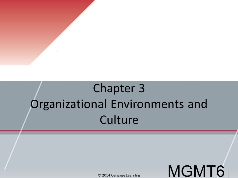 Chapter 3 Organizational Environments and Culture MGMT6 © 2014 Cengage Learning