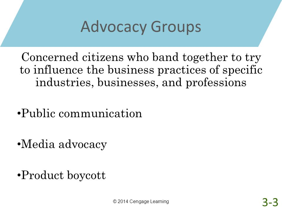 Advocacy Groups Concerned citizens who band together to try to influence the business practices of specific industries, businesses, and professions Pu