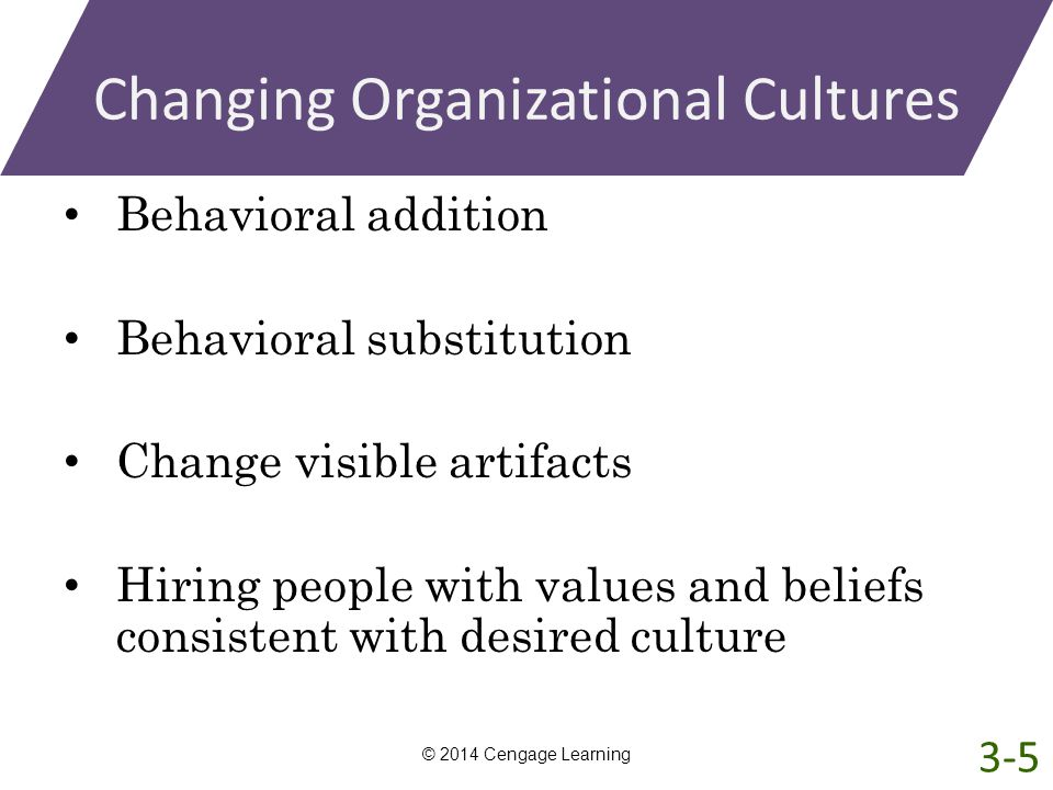 Changing Organizational Cultures Behavioral addition Behavioral substitution Change visible artifacts Hiring people with values and beliefs consistent