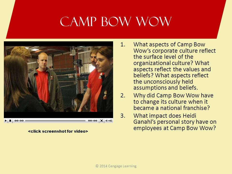 Camp Bow Wow 1.What aspects of Camp Bow Wow's corporate culture reflect the surface level of the organizational culture? What aspects reflect the valu