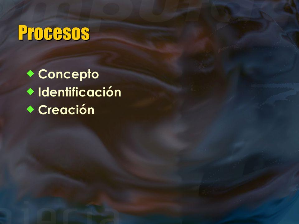 Procesos  Concepto  Identificación  Creación