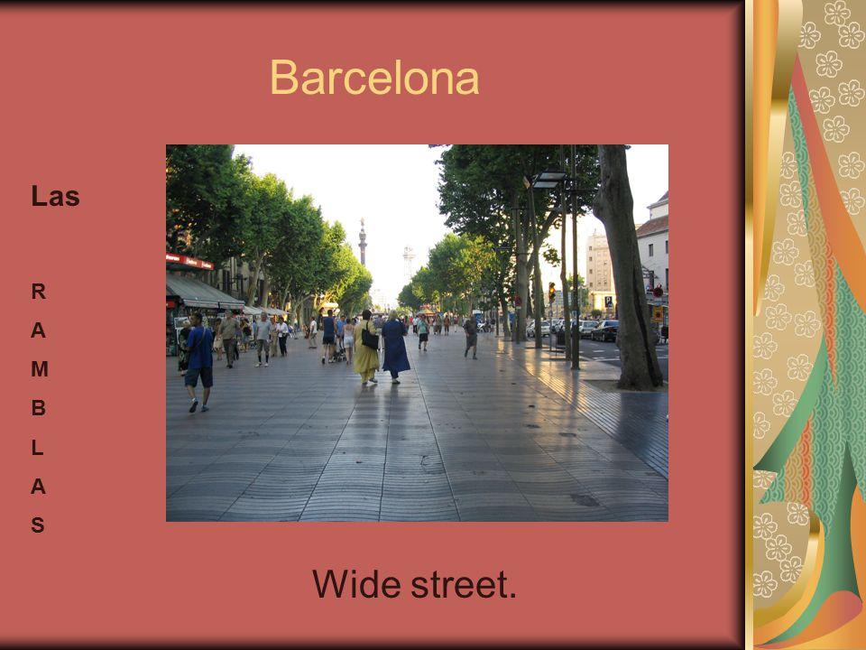 Barcelona Las R A M B L A S Wide street.