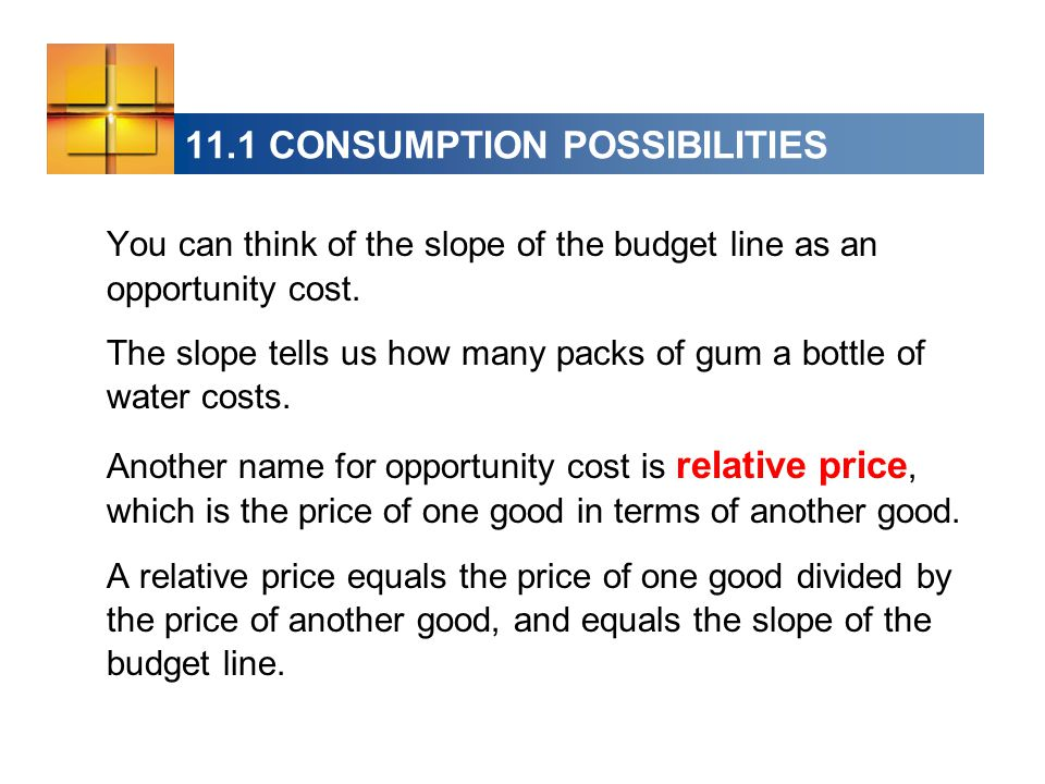 11.1 CONSUMPTION POSSIBILITIES You can think of the slope of the budget line as an opportunity cost.