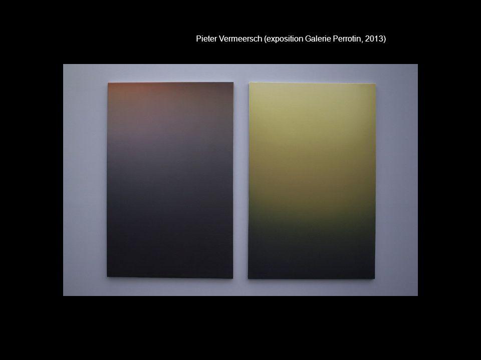 Pieter Vermeersch (exposition Galerie Perrotin, 2013)